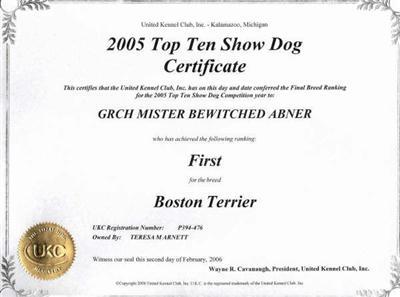 Boston Terrier Stud Dog Akc Ch Ukc Rbims Grch Mister