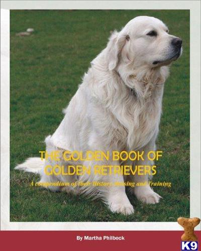 goldenpaws@embarqmail.com Picture 3